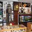 Antique Mechanical/Quartz Watch & Clock Repairs and Servicing