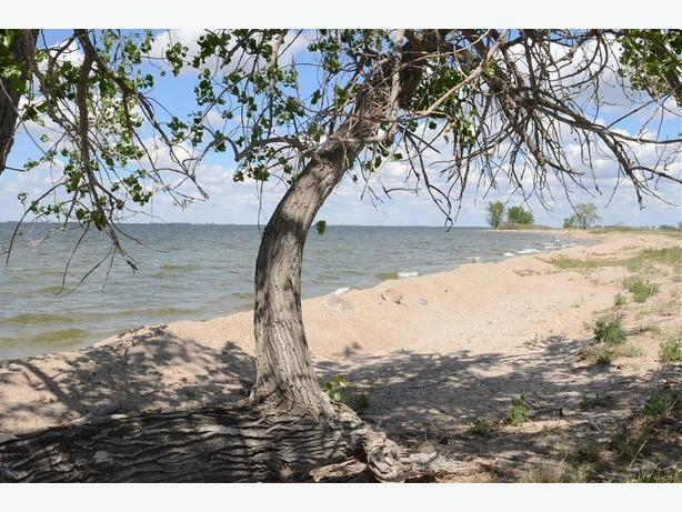 SPECIAL PRICE on Waterfront Building Lot for Sale