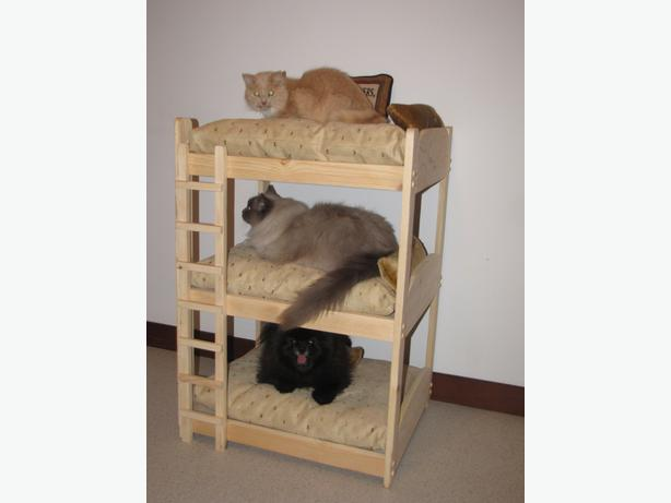 PET BED / BUNK BED 2 TIER AND 3 TIER FOR DOGS AND CATS East Kildonan ...