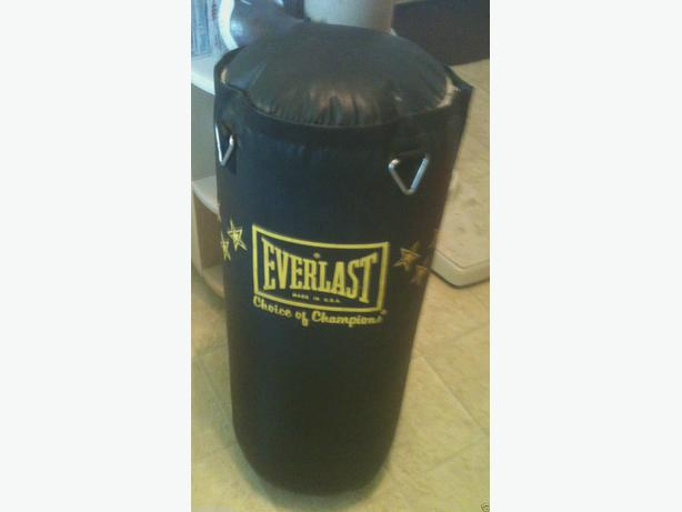 Everlast Punching Bag With Stars Choice Of Champions