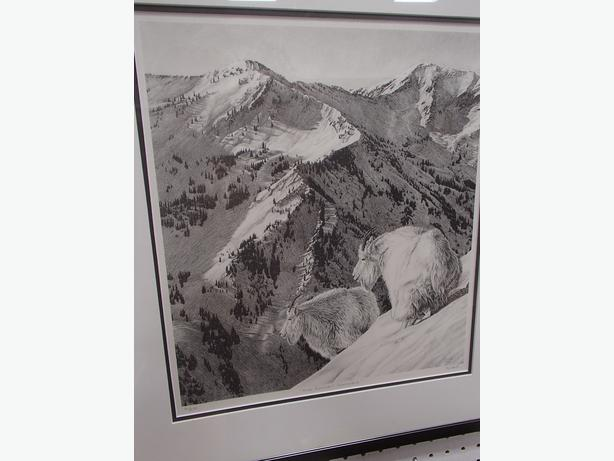 "Print of ""High Country Sentinels"""