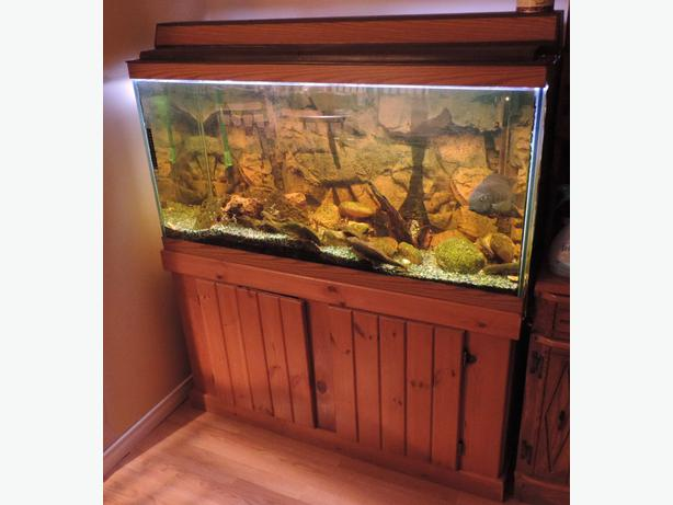 Aquarium 90 gallon with stand new price outside for 90 gallon fish tank stand