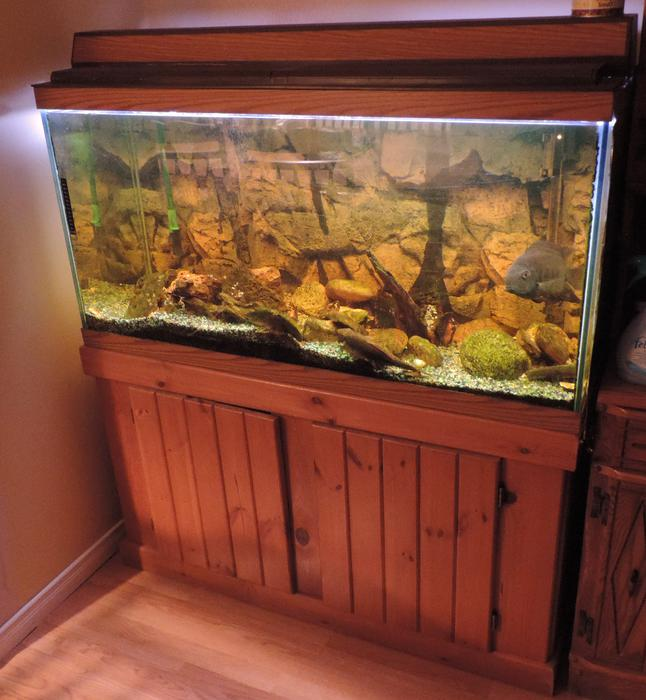 Aquarium 90 Gallon With Stand New Price Outside