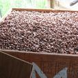 Hazelnut shells Lasts longer and mulchs better than bark mulch