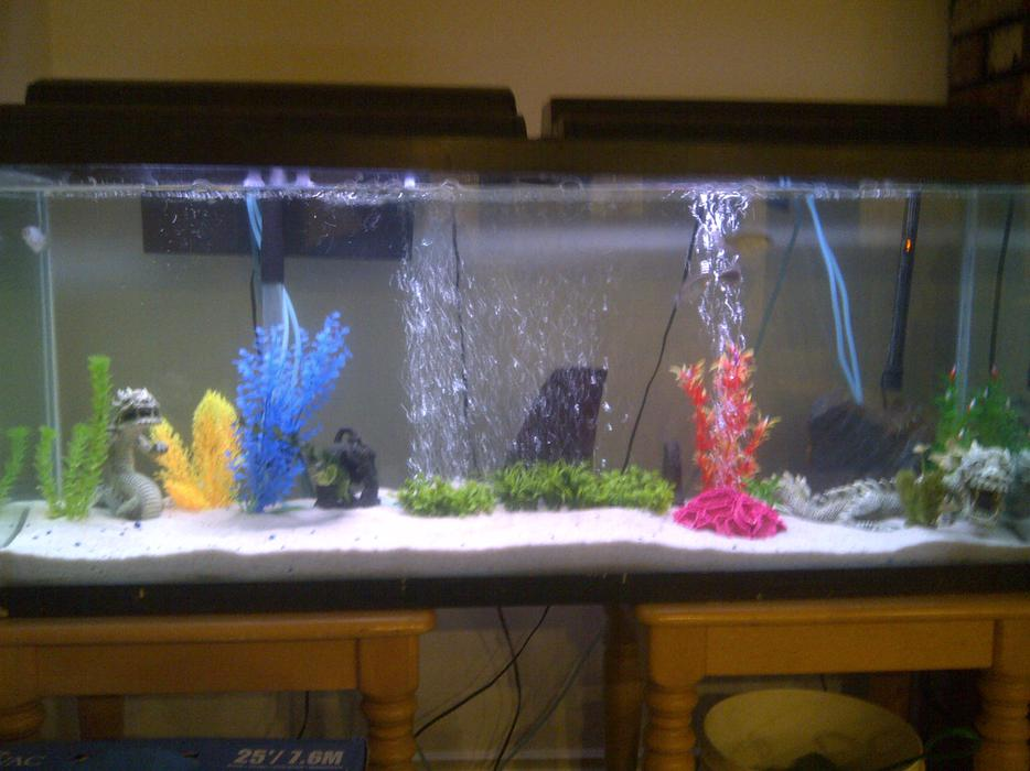 Two fish tanks for sale 75 and 90gal both sand bottom for Used fish tanks for sale