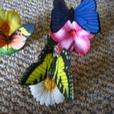 Collectible Porcelein Butterflies