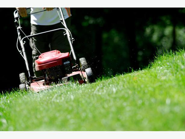 Landscaping Gardening Helper Wanted Victoria City Victoria