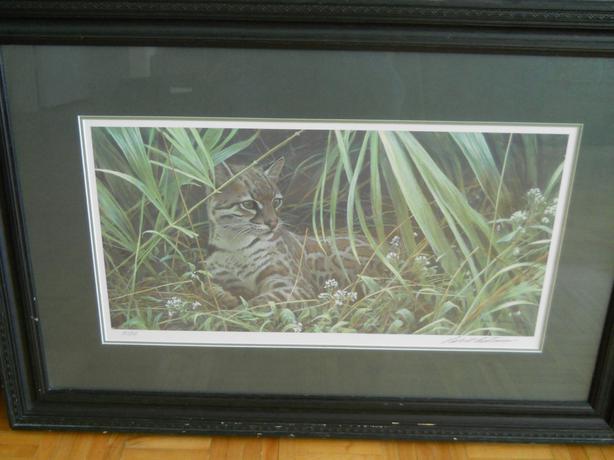 Reclining Ocelot Robert Bateman Print Framed S/N