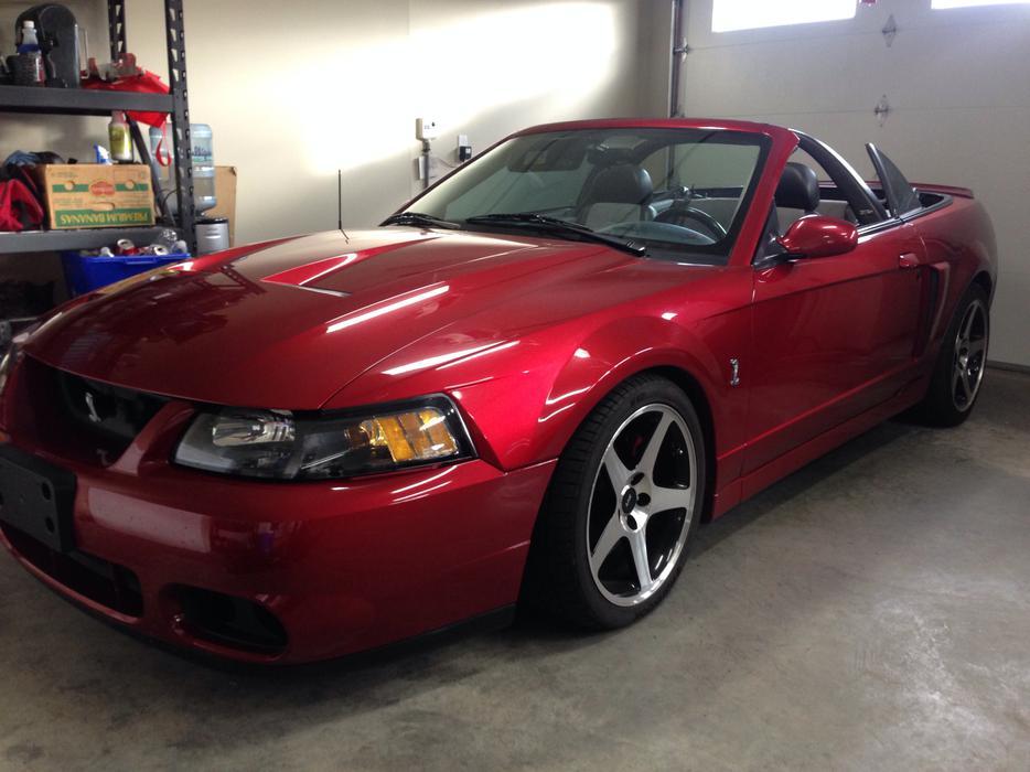 2003 Mustang Terminator Value
