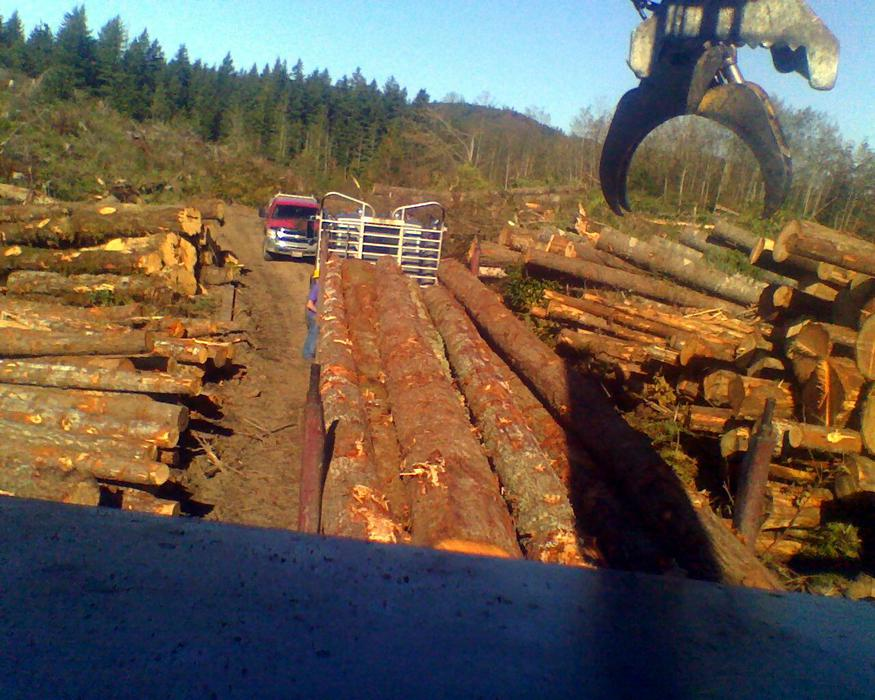 Washington Logging Company 1 8oo Log Alot Timber Trees
