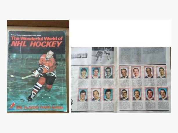 1972/73 Eddie Sargent hockey sticker set in Dennis Hull album