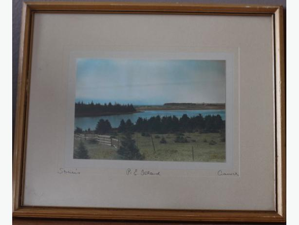 "CRASWELL HAND TINTED PHOTOGRAPH ""SOURIS "" ORIGINAL FRAME"