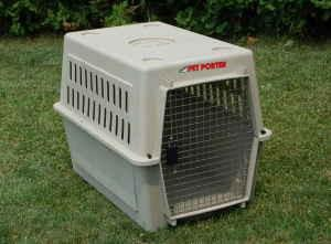 How To Open A Dog Kennel In Ontario