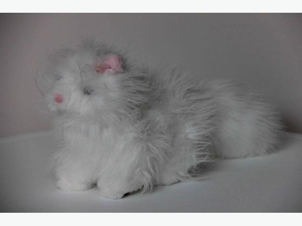 Webkinz Persian Kitten
