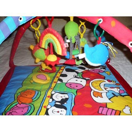 New Tiny Love Gymini Deluxe 3-D Activity Baby Gym Play Mat