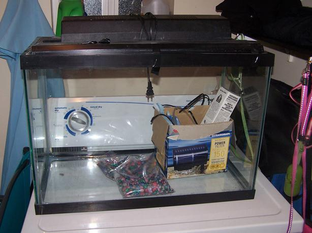 20gal Fish Tank Complete Campbell River Comox Valley