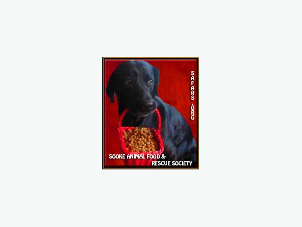 Free Dog Food For Low Income Families