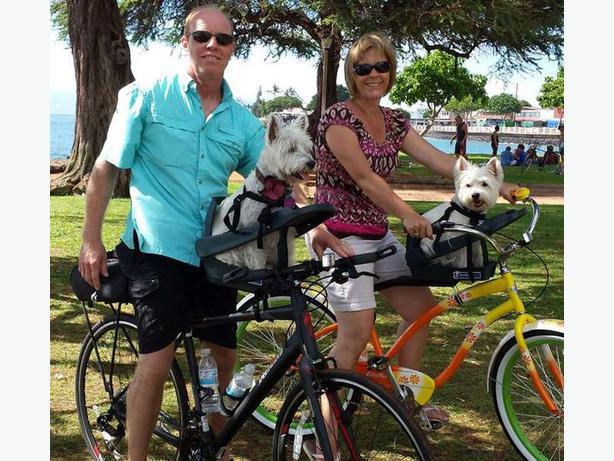 Buddy Rider Bicycle Pet Seat