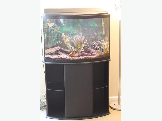 38 gallon bow front fish tank and stand with accessories