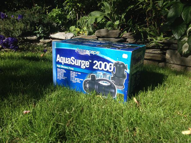 Pond water pump brand new west shore langford colwood for Pond pump setup