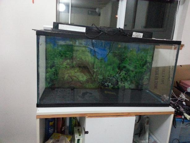 33 gallons fish tank saanich victoria for How to fix a leaking fish tank