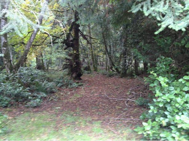 9.14 acres - close to beaches