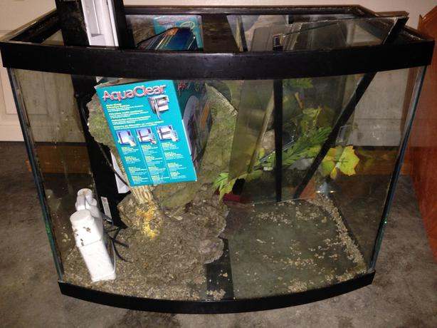 50 gallon fish tank for sale obo victoria city victoria for 50 gallon fish tank
