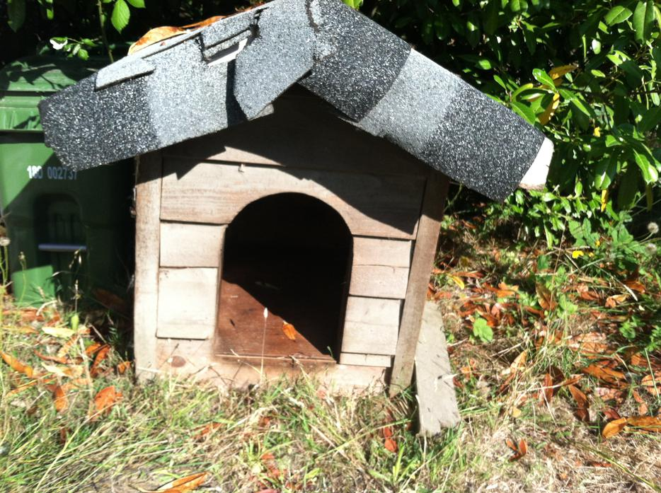 Used Victoria Dog House