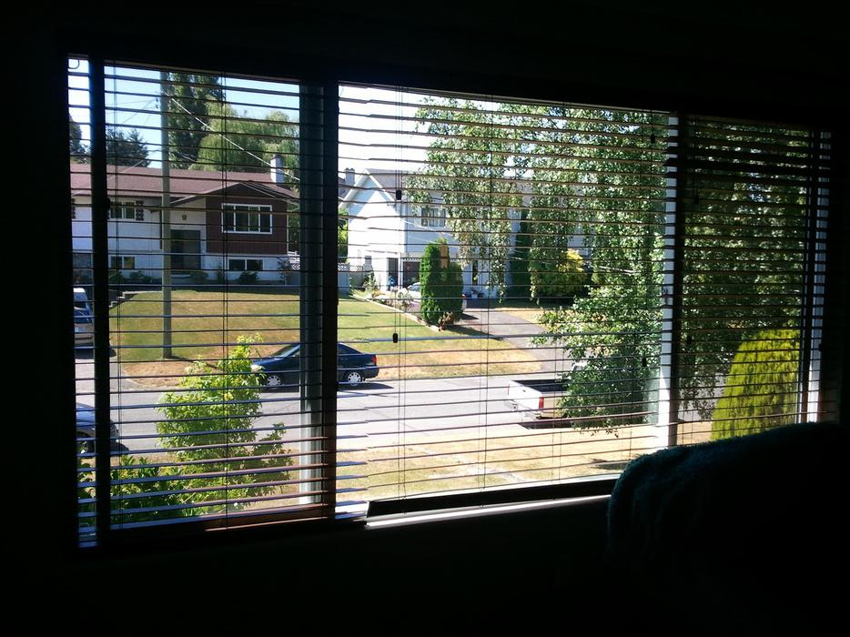 Brown Faux Wood Blinds Saanich Victoria