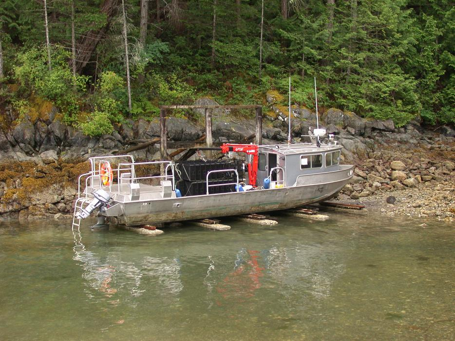Aluminum Boats For Sale Comox Valley