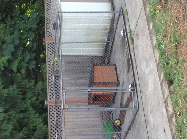 Dog Kennels For Sale Sault Ste Marie