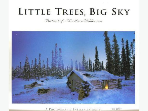 LITTLE  TREES,  BIG  SKY by TIM  HAUF  with text by Conger Beasley Jr.