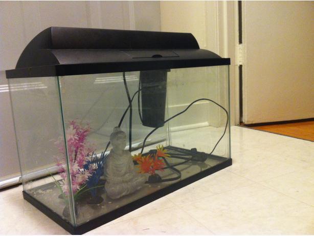 10 gallon fish tank pump hood lamps accessories for Fish tank hood