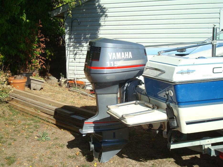 16 5 Campion Boat Motor And Trailer Esquimalt View