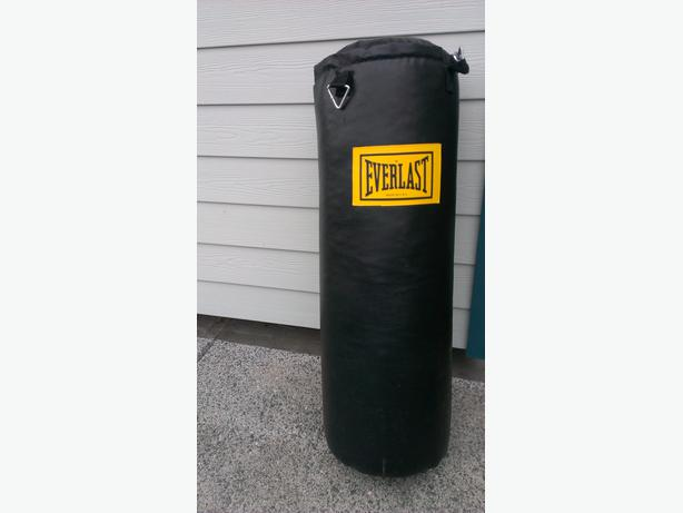 everlast 100lb black leather punching bag saanich
