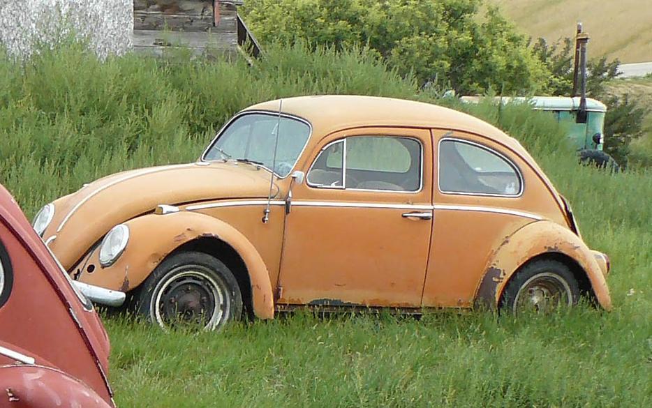 volkswagen vw beetle bug   barn find  south saskatchewan location regina