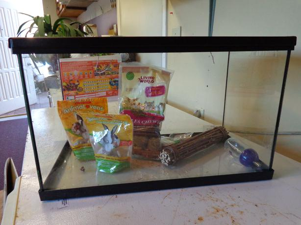 Ten gallon tank for a hamster small rodent north saanich for Fish tank for hamster