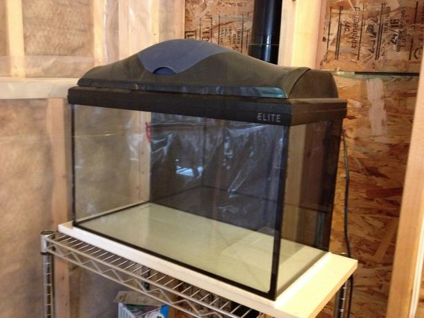 8 gallon fish tank with hood and light malahat including for Fish tank light hood