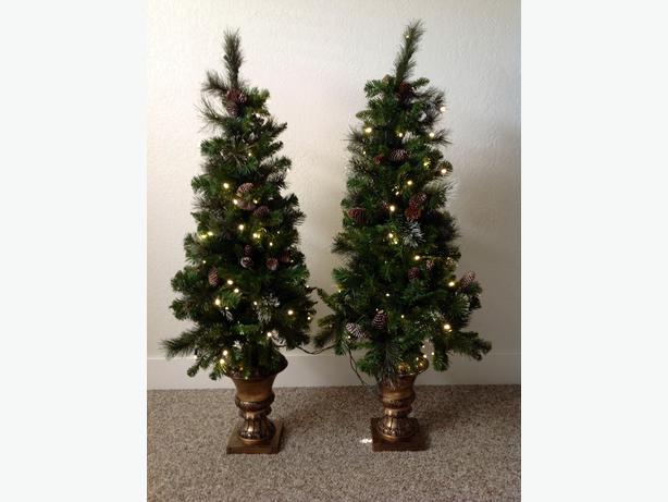 "54"" Pre-lit Porch Christmas Trees (Indoor/Outdoor) North"