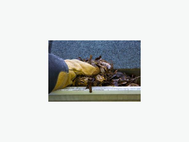 Gutter Cleaning Time Specials On Now Call Today Victoria