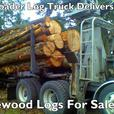 Buying Timber, Contract Loggers, selling trees, Logging Company Washington
