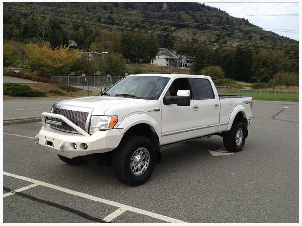 2010 ford f 150 platinum - car pictures
