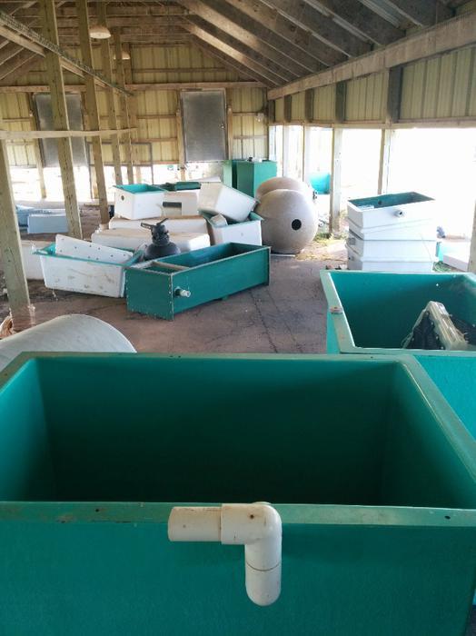 Pacific Rim Equipment >> fish trays , fish tubs and hatchery equipment ...