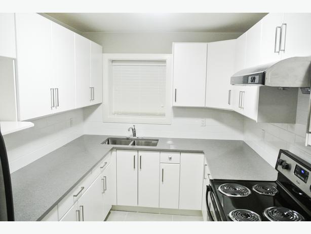 2 Bedroom Basement Suite In New Delta Home For Rent Surrey Incl White Rock Surrey