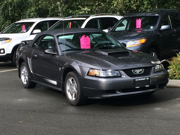 2003 Ford Mustang Convertible New Top Cv Courtenay
