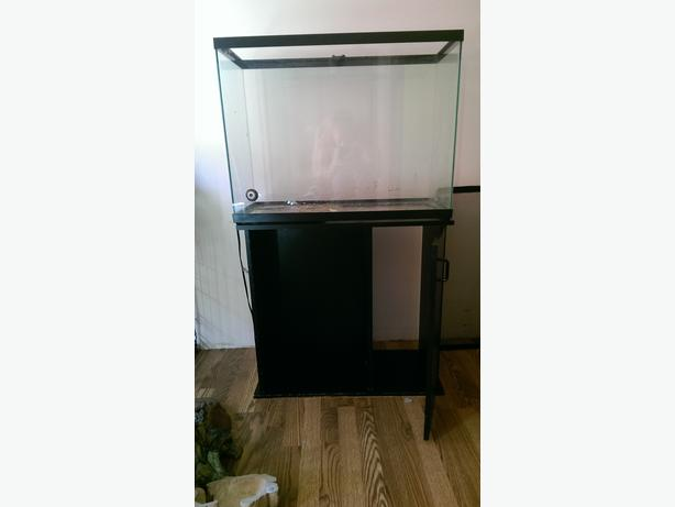38 gallon with stand esquimalt view royal victoria for 38 gallon fish tank