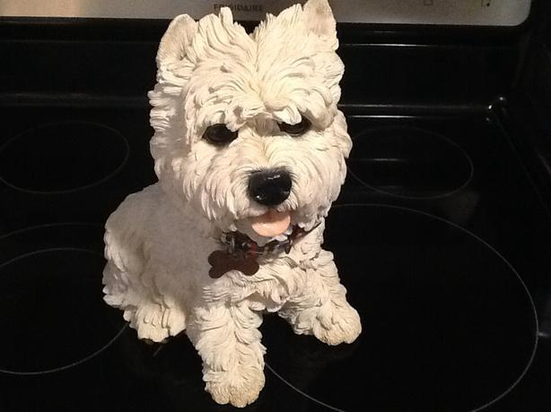 Country Artist Ben Westie Scottish Terrier