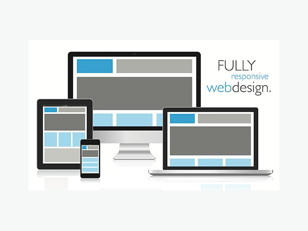 Responsive Custom Content Management Websites ONLY $425