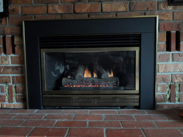 Majestic Insta-flame Gas Fireplace Insert (HE30) - Majestic Insta-flame Gas Fireplace Insert (HE30) Saanich, Victoria