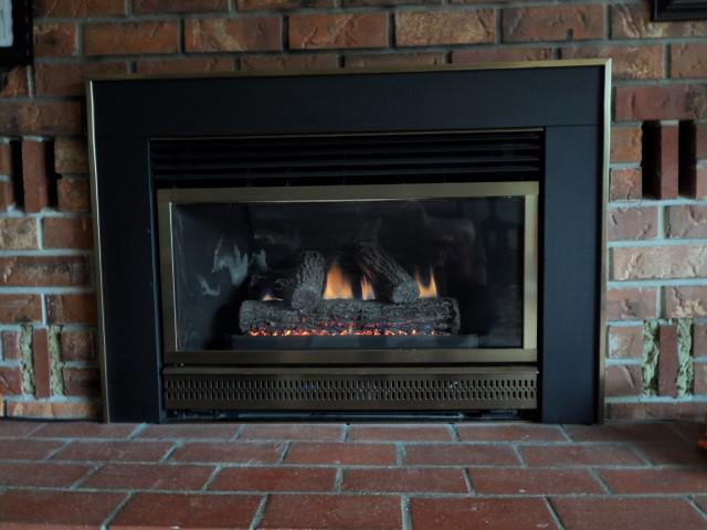 Majestic Insta Flame Gas Fireplace Insert He30 Saanich